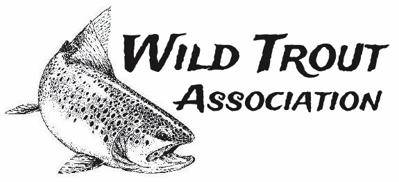 Wildtrout